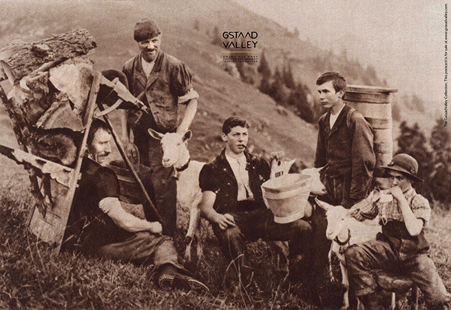 Swiss farmers and cheesemakers with their dairy goats in the highlands of Switzerland